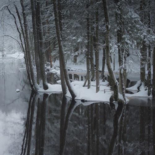 kolioli-20171215-Olga-Potapova-Winter-etude-4-Karelian-Isthmus