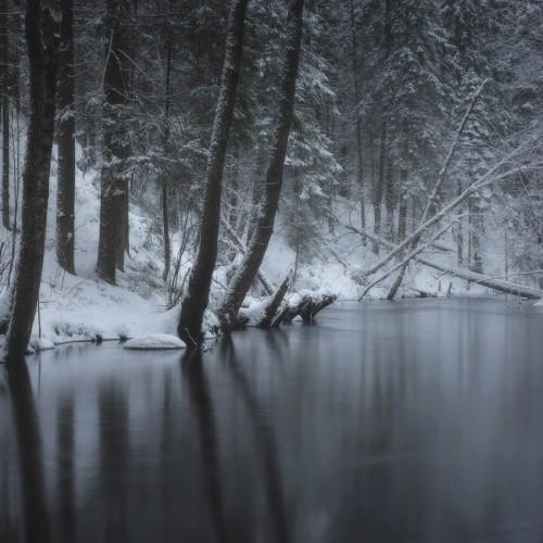 kolioli-20171215-Olga-Potapova-Winter-etude-2-Karelian-Isthmus