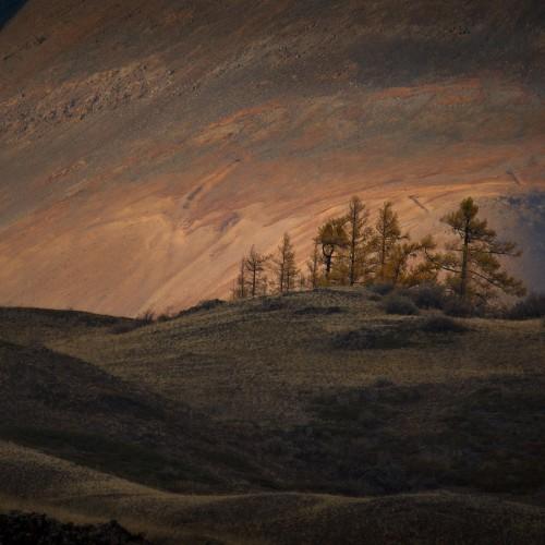 kolioli-20190925-Nikolay-Stepanenko-Jupiter-Sunrise-Kurai-steppe-Altai