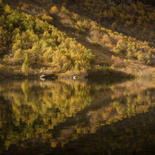 kolioli-20181004-Olga-Potapova-Kaleidoscope-of-Autumn-Caucasus-mountains