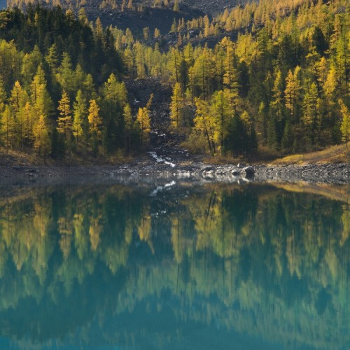 kolioli-20190919-Olga-Potapova-Autumn-lake-reflections-1-Altai