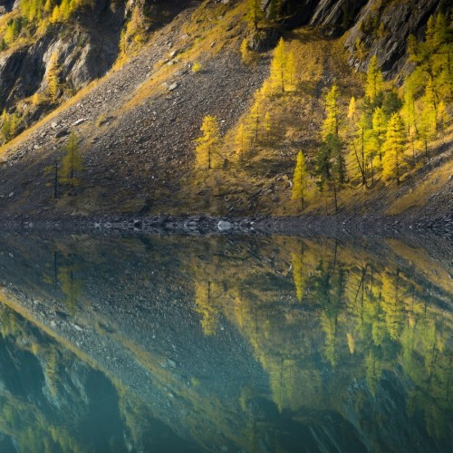kolioli-20190919-Olga-Potapova-Autumn-lake-reflections-2-Altai