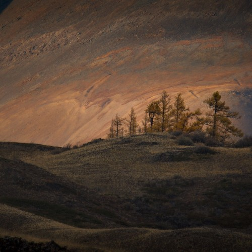 kolioli-20190925-Nikolay-Stepanenko-Jupiter-Sunrise-Kurai-steppe-Altai