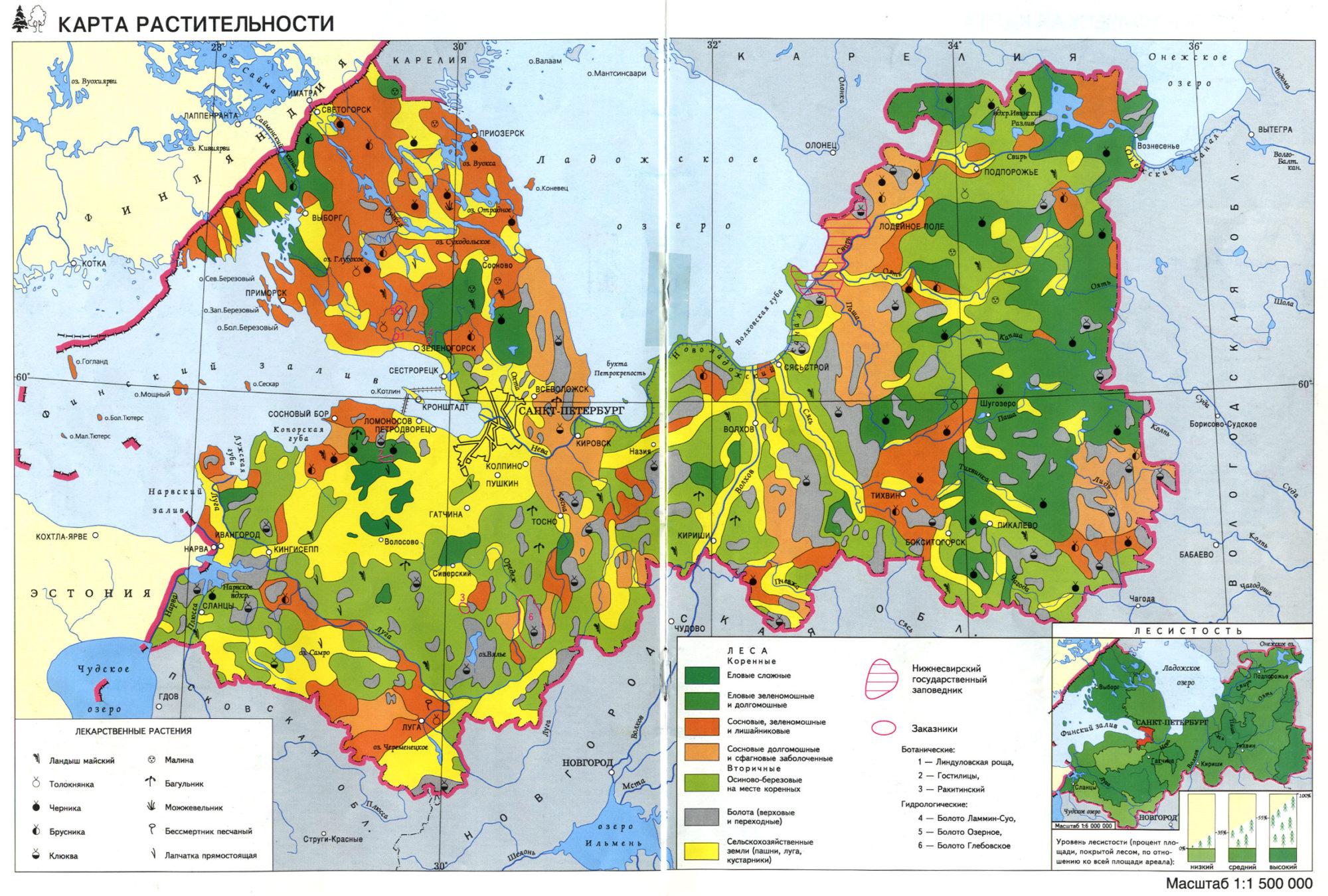 Карта растительности Ленинградской области