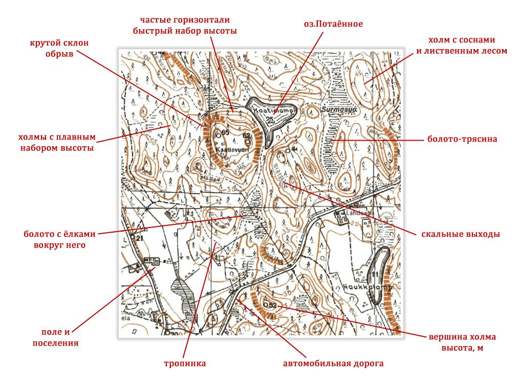 разбор финской карты